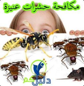 مكافحة حشرات عنيزة
