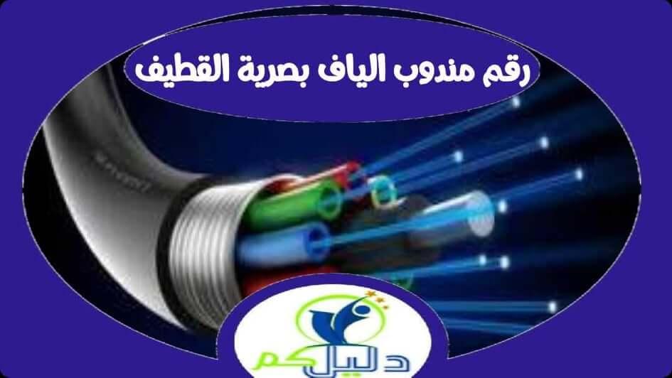 رقم مندوب الياف بصرية stc القطيف 0562092756