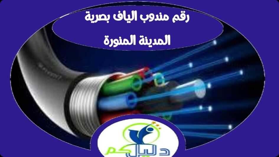 رقم مندوب الياف بصرية stc المدينة المنورة 0562092756